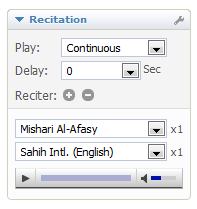 wiki:recitation-menu-2.png